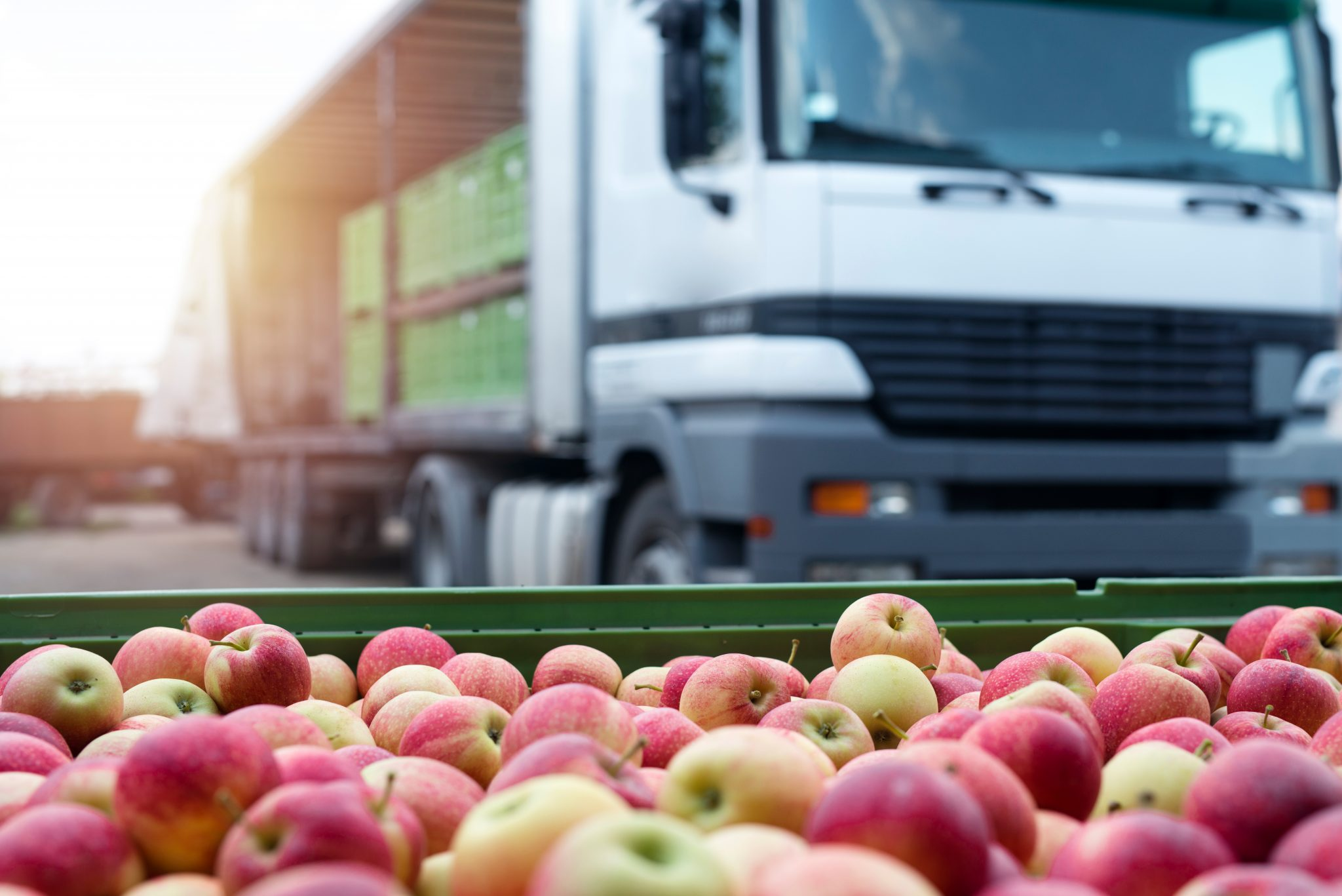 Produce in front of Truck